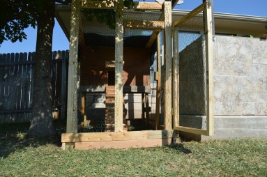 This is my old coop in Texas. Much smaller and simpler, as it only housed two chickens.